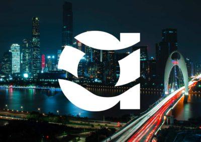 Strategy, Branding & Identity Design Amnis