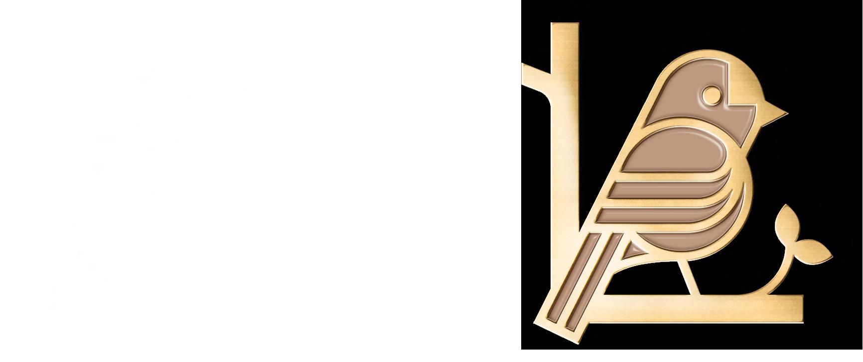 bird-logo-development22